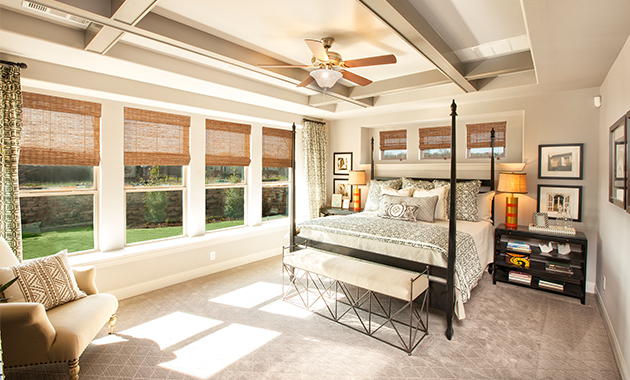 Master Bedroom- Design 3767