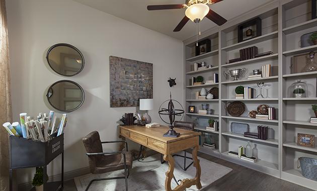 Study - Design 3163