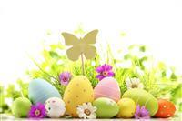 Move into Your New Home and Have Easter Brunch in Euless, TX